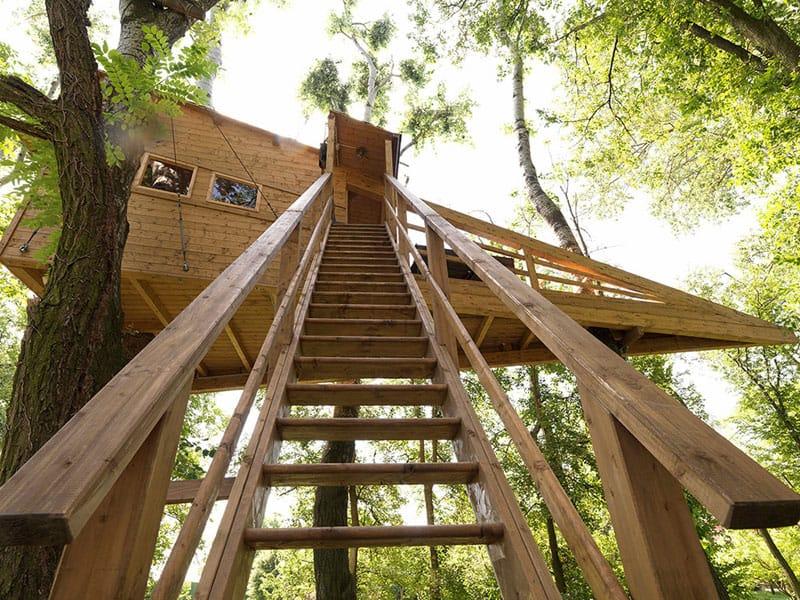 Jove: La Casa sull'Albero